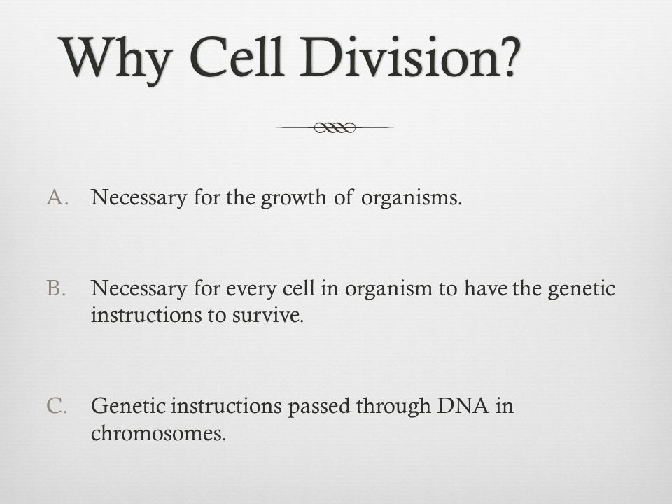 Why Cell Division Necessary for the growth of organisms.