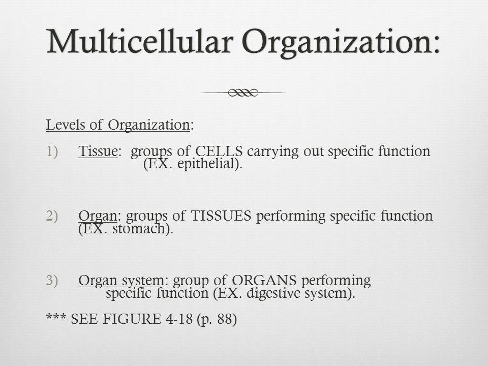 Multicellular Organization: