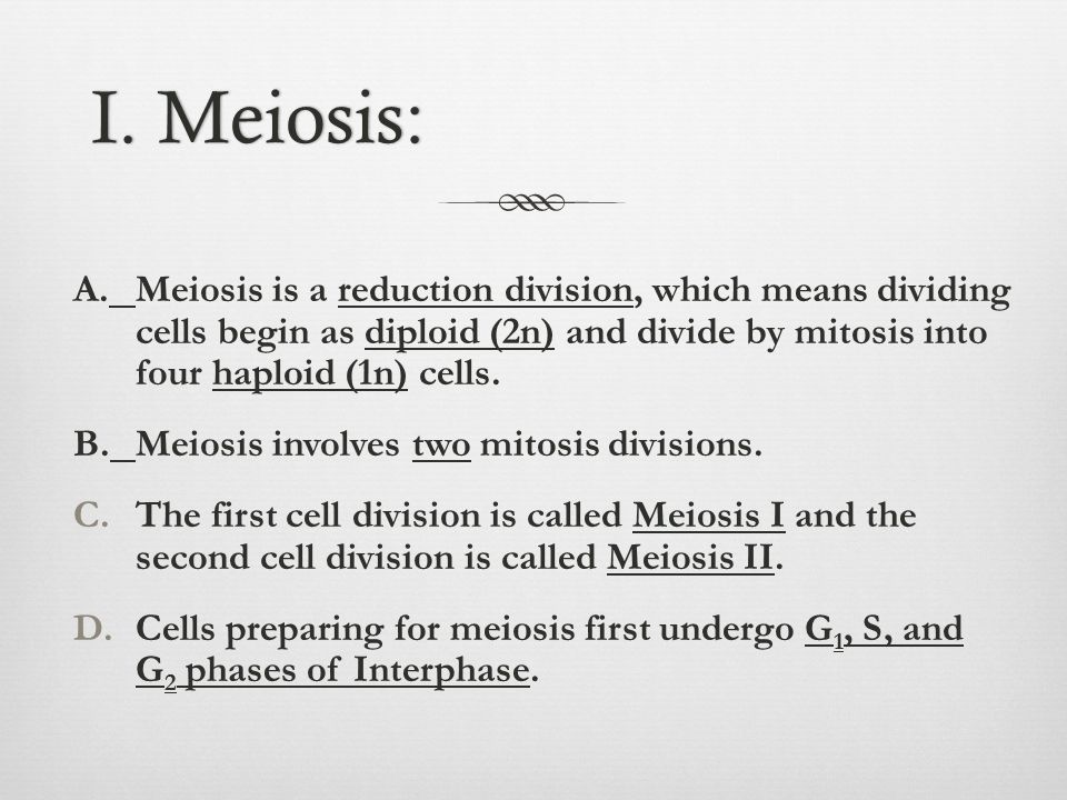 I. Meiosis: