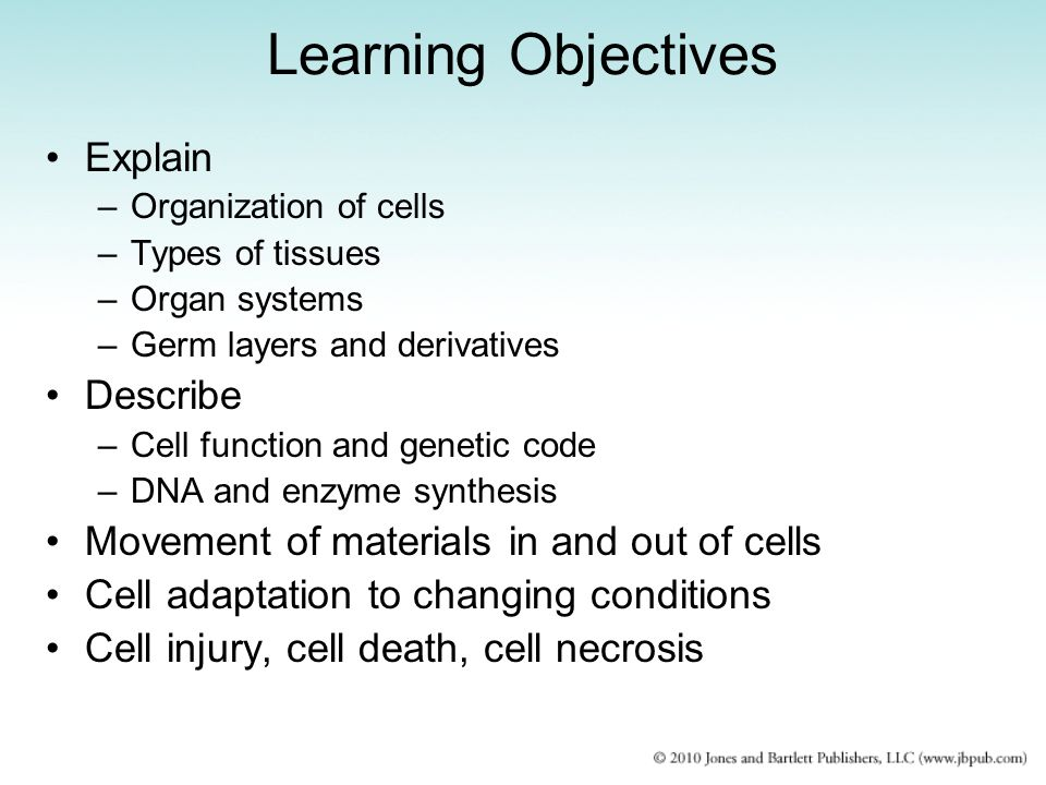 Learning Objectives Explain Describe