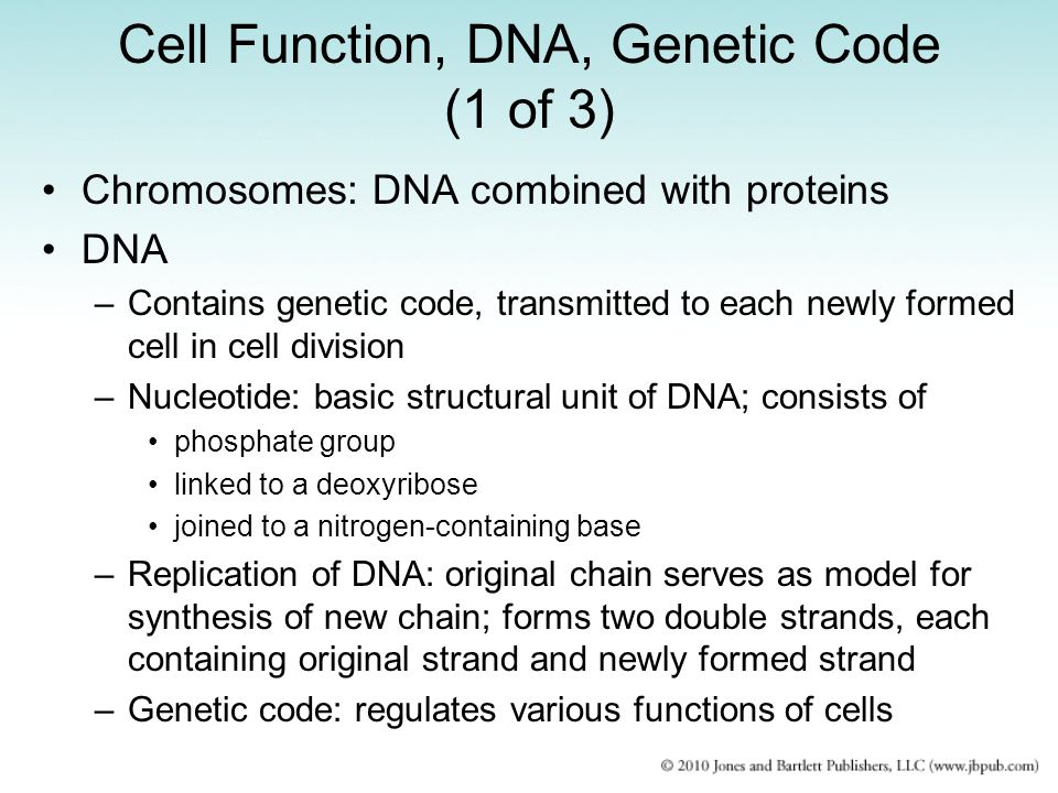 Cell Function, DNA, Genetic Code (1 of 3)