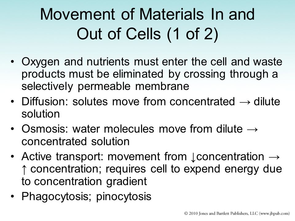 Movement of Materials In and Out of Cells (1 of 2)
