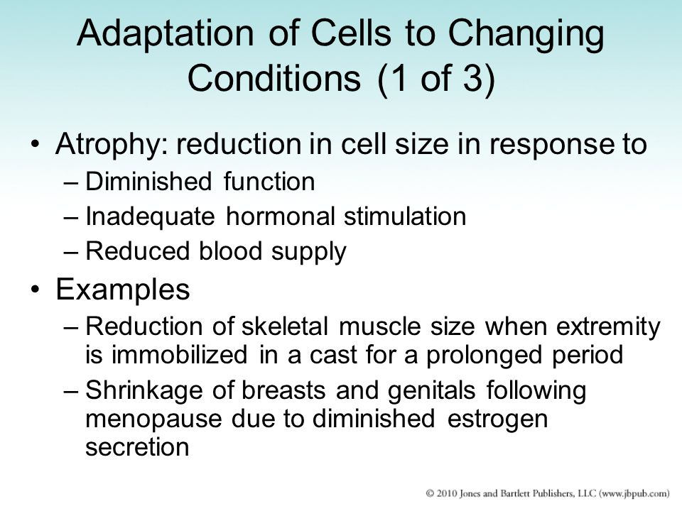 Adaptation of Cells to Changing Conditions (1 of 3)