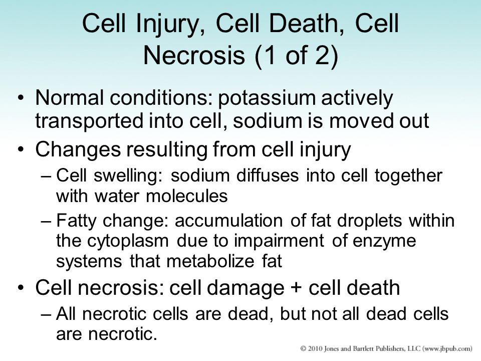 Cell Injury, Cell Death, Cell Necrosis (1 of 2)
