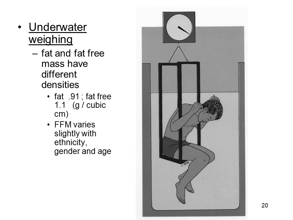 Underwater weighing fat and fat free mass have different densities