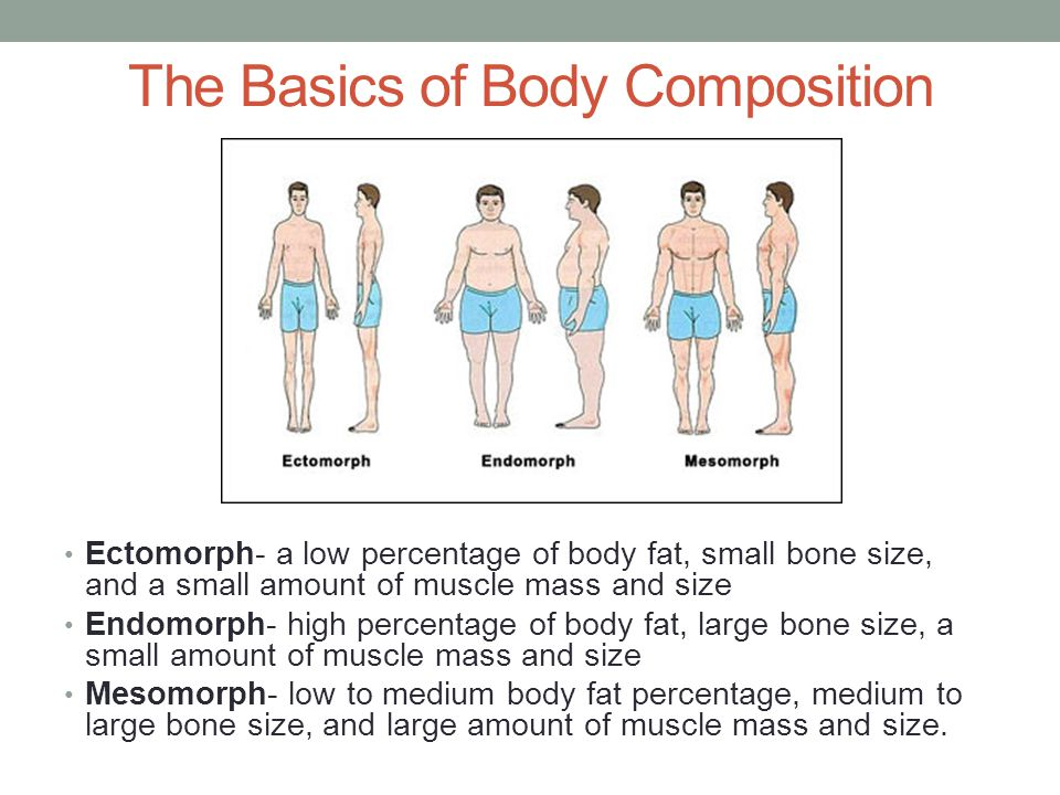 The Basics of Body Composition