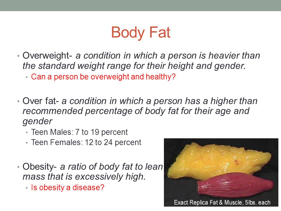 Body Fat Overweight- a condition in which a person is heavier than the standard weight range for their height and gender.