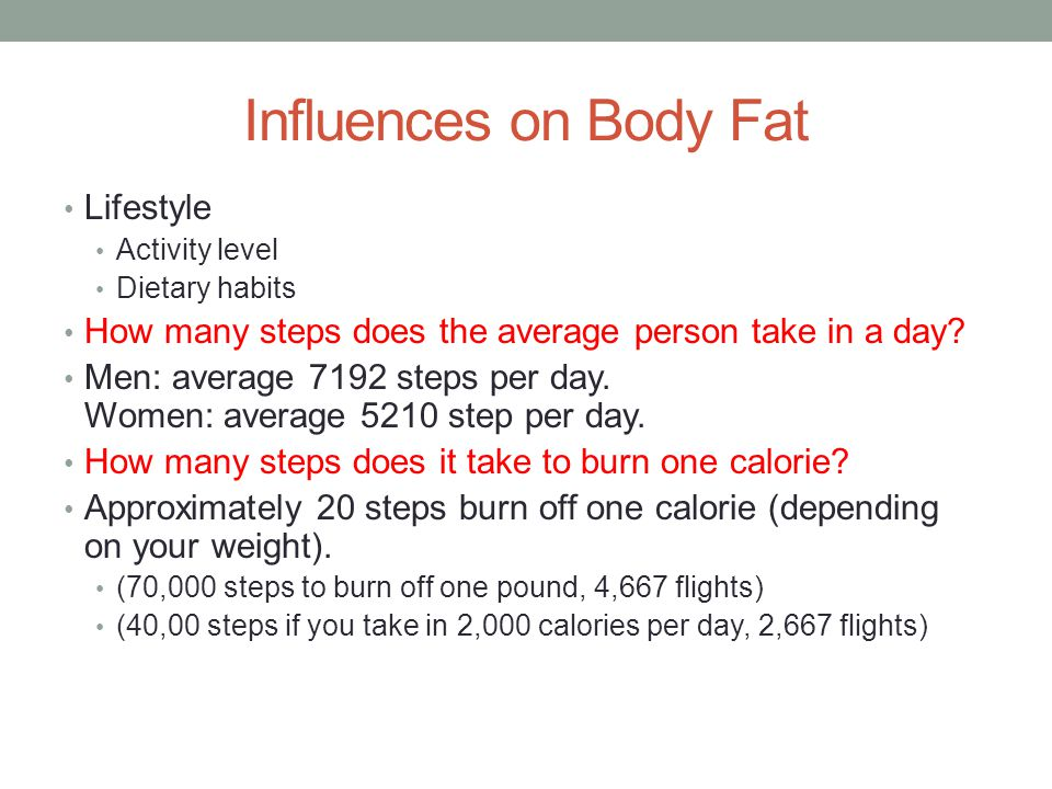 Influences on Body Fat Lifestyle
