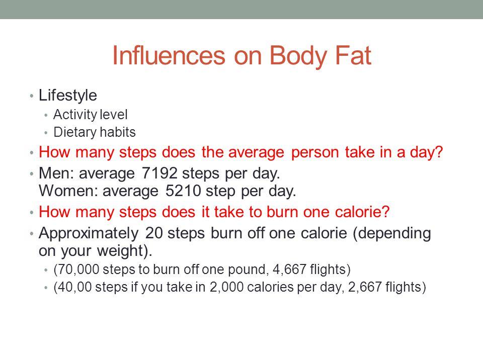 Influences on Body Fat Lifestyle