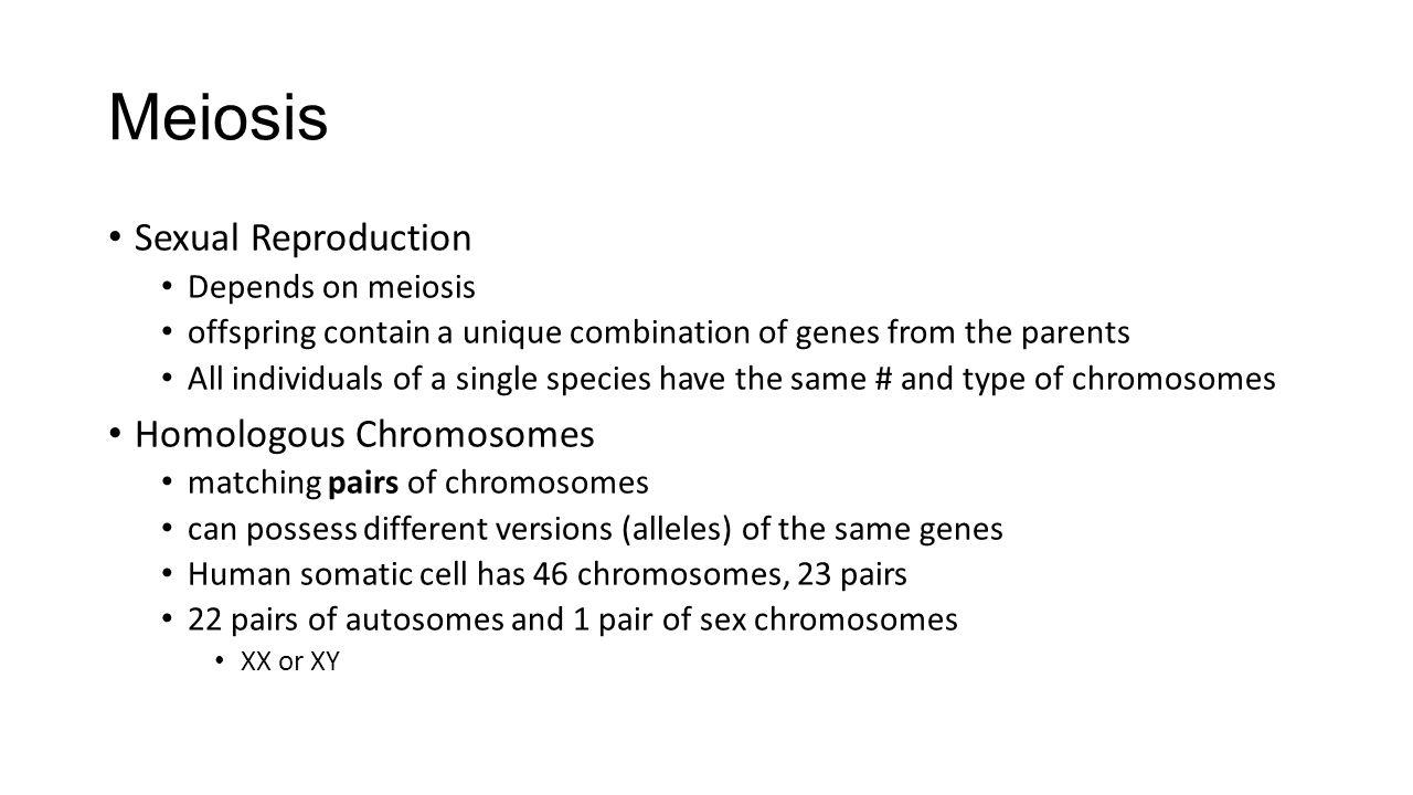 Meiosis Sexual Reproduction Homologous Chromosomes Depends on meiosis