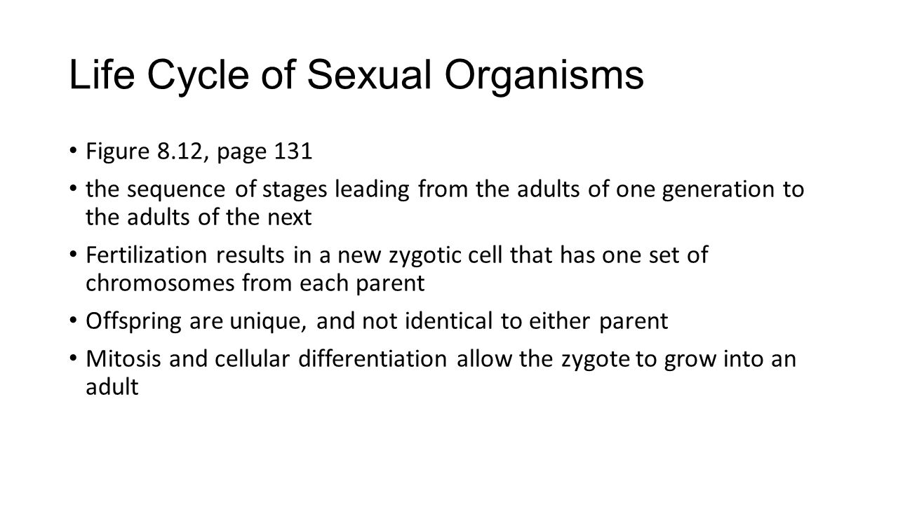 Life Cycle of Sexual Organisms