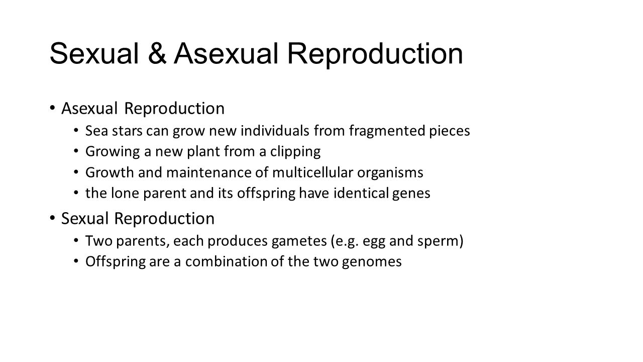 Sexual & Asexual Reproduction
