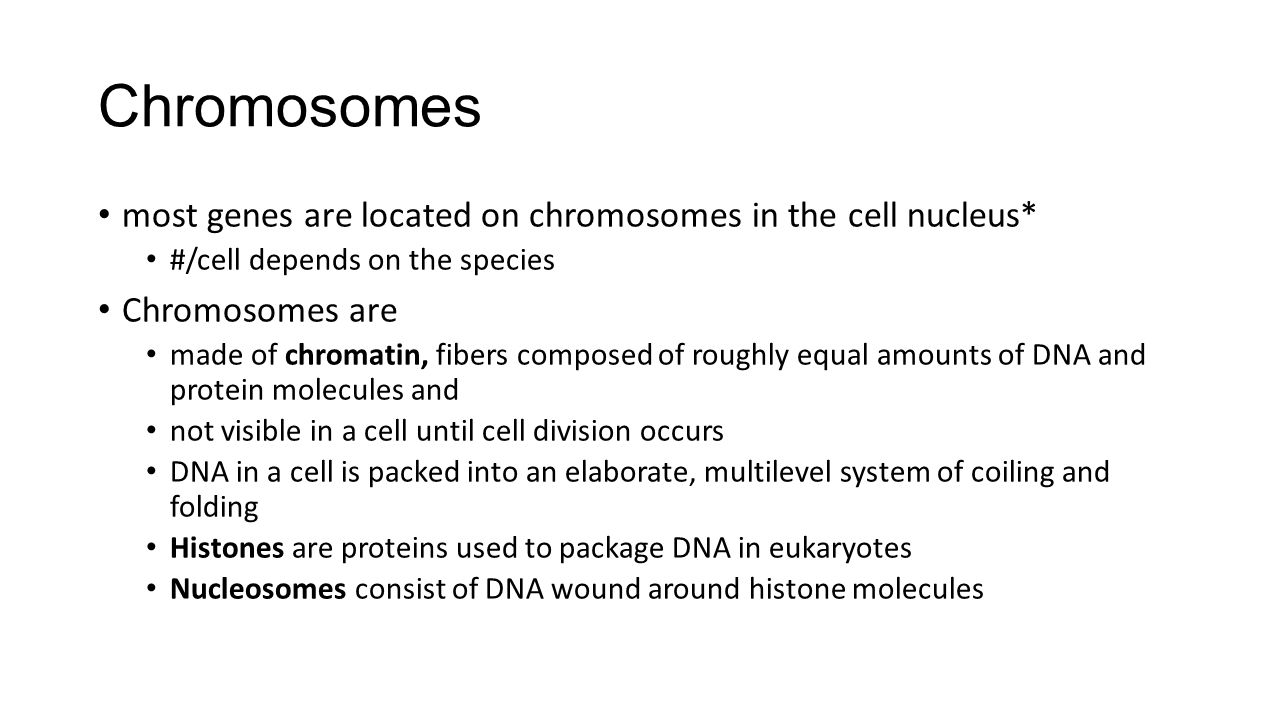 Chromosomes most genes are located on chromosomes in the cell nucleus*