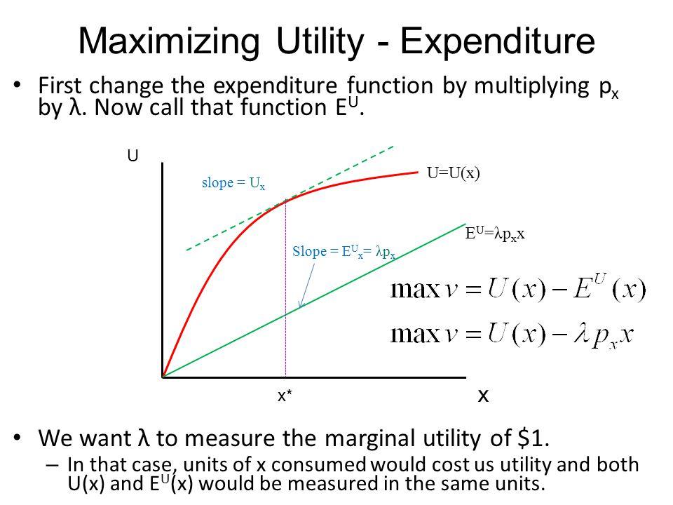 Maximizing Utility - Expenditure