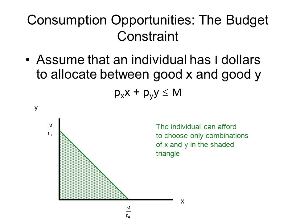 Consumption Opportunities: The Budget Constraint