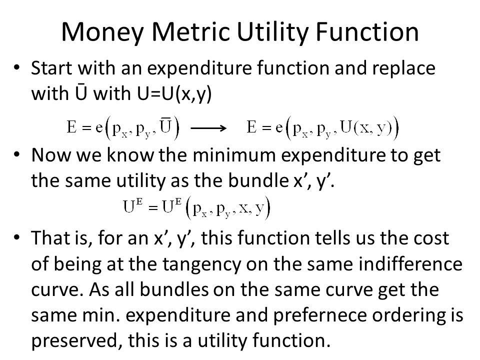 Money Metric Utility Function