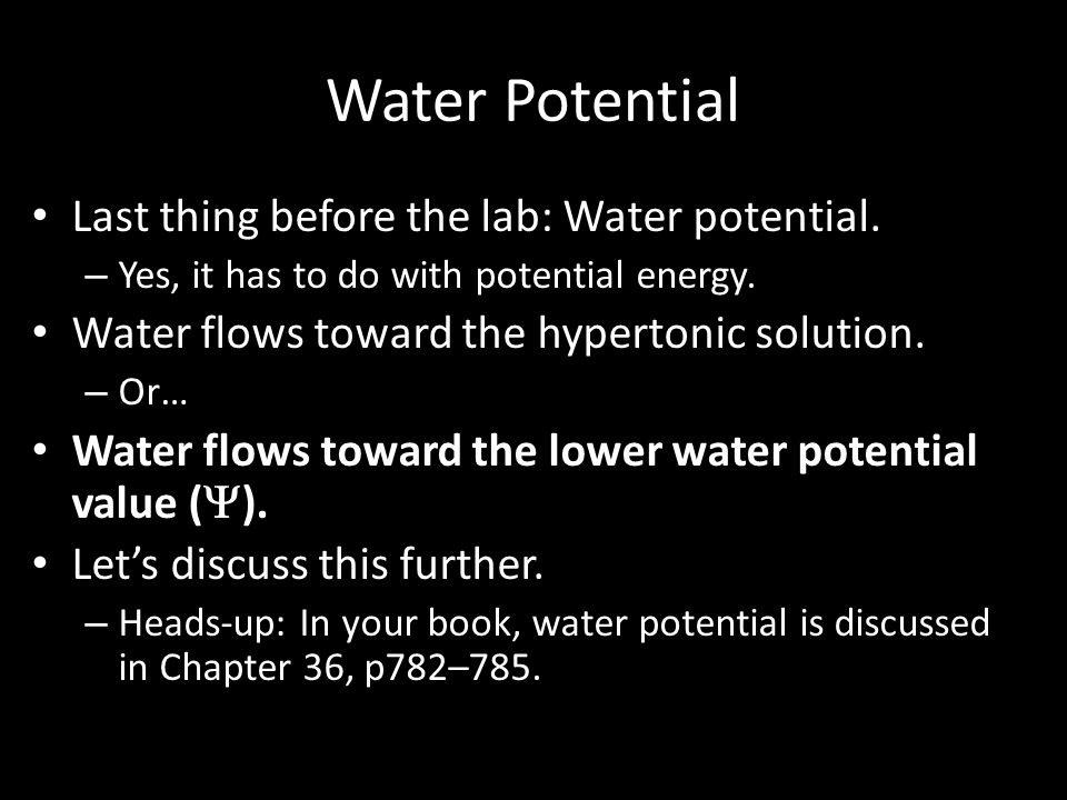 Water Potential Last thing before the lab: Water potential.