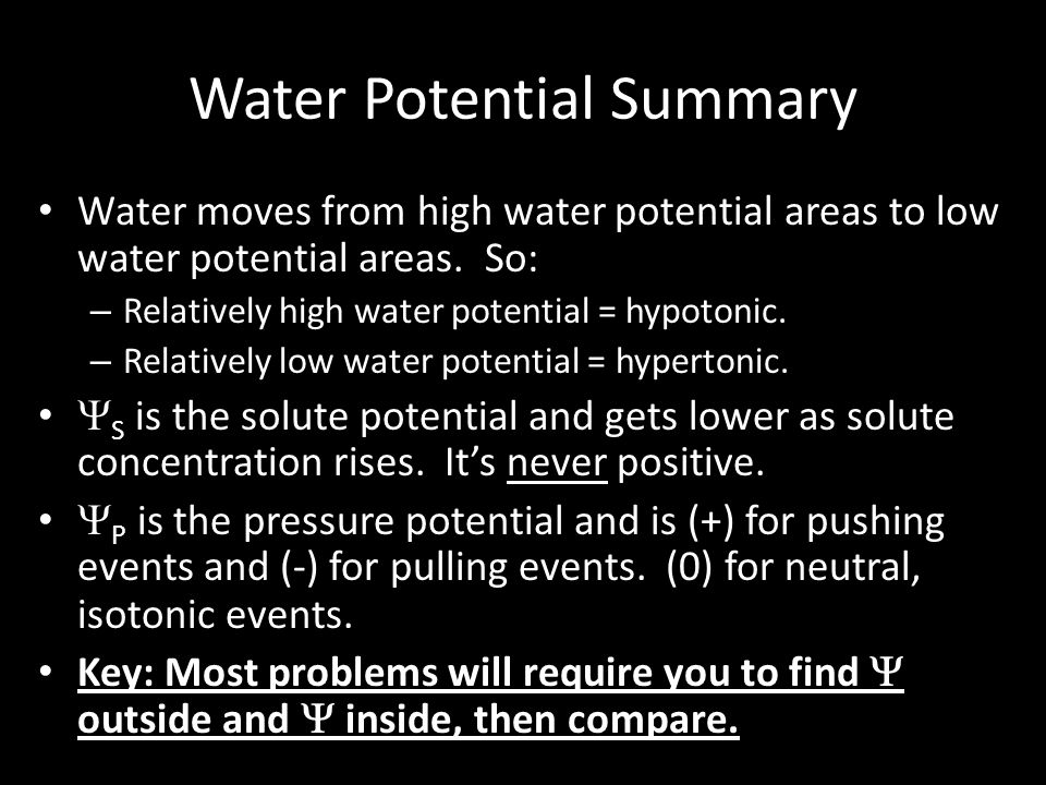 Water Potential Summary
