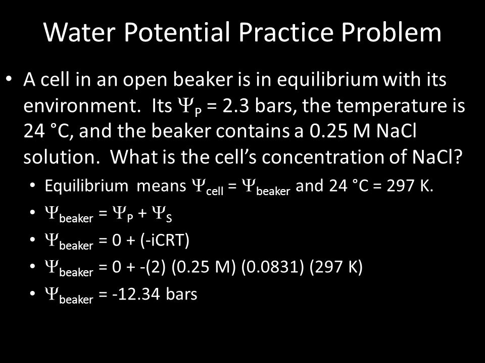 Water Potential Practice Problem