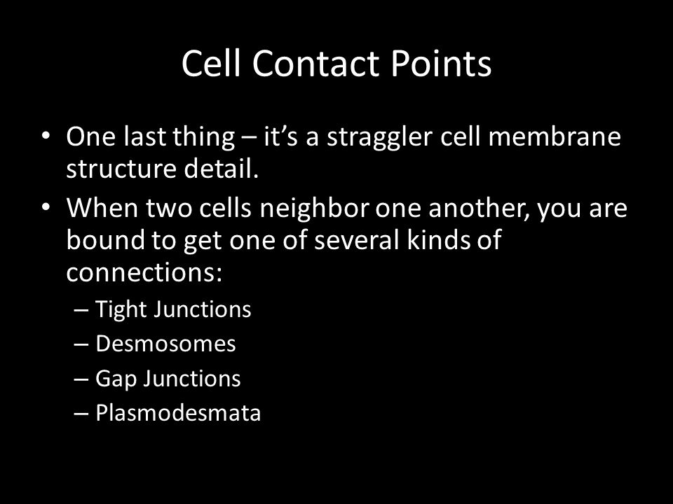 Cell Contact Points One last thing – it's a straggler cell membrane structure detail.