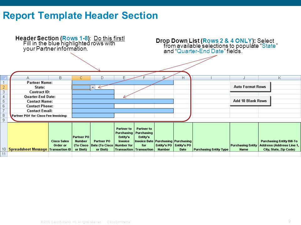 Report Template Header Section