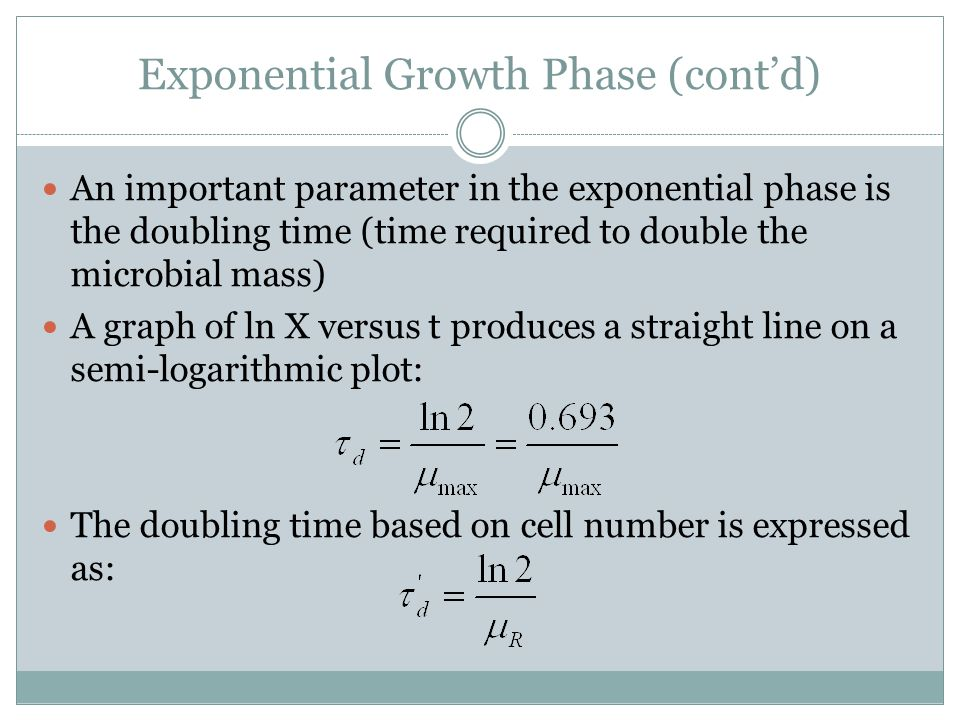 Exponential Growth Phase (cont'd)