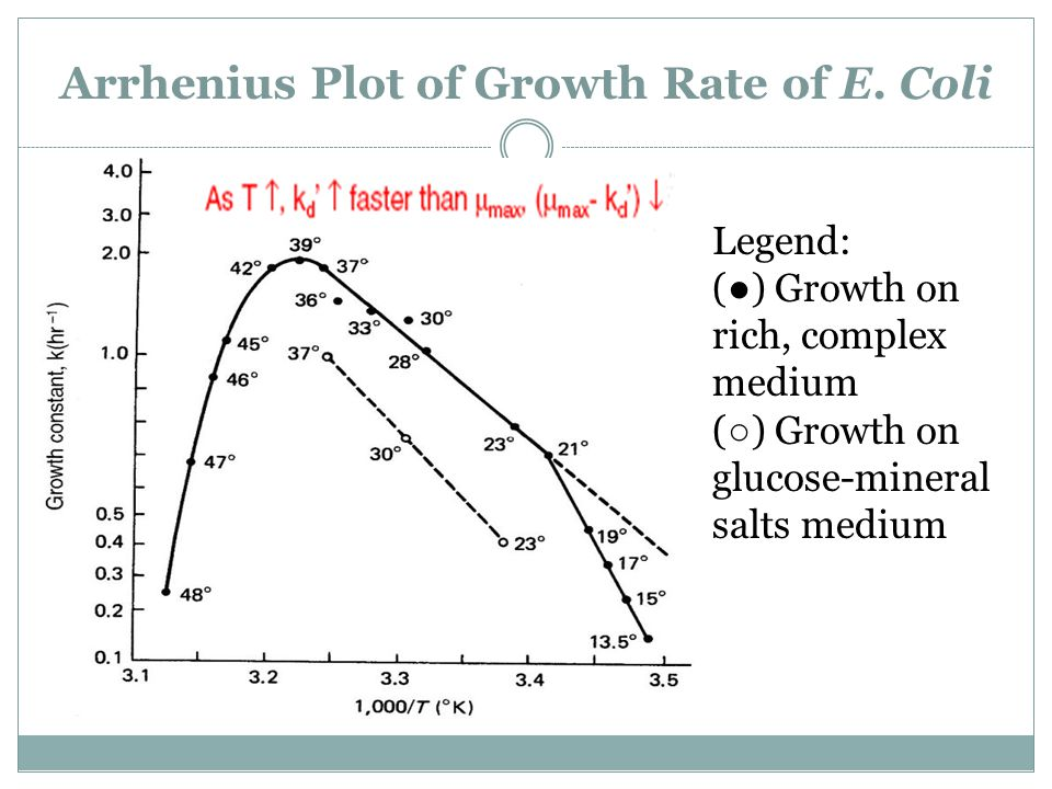 Arrhenius Plot of Growth Rate of E. Coli
