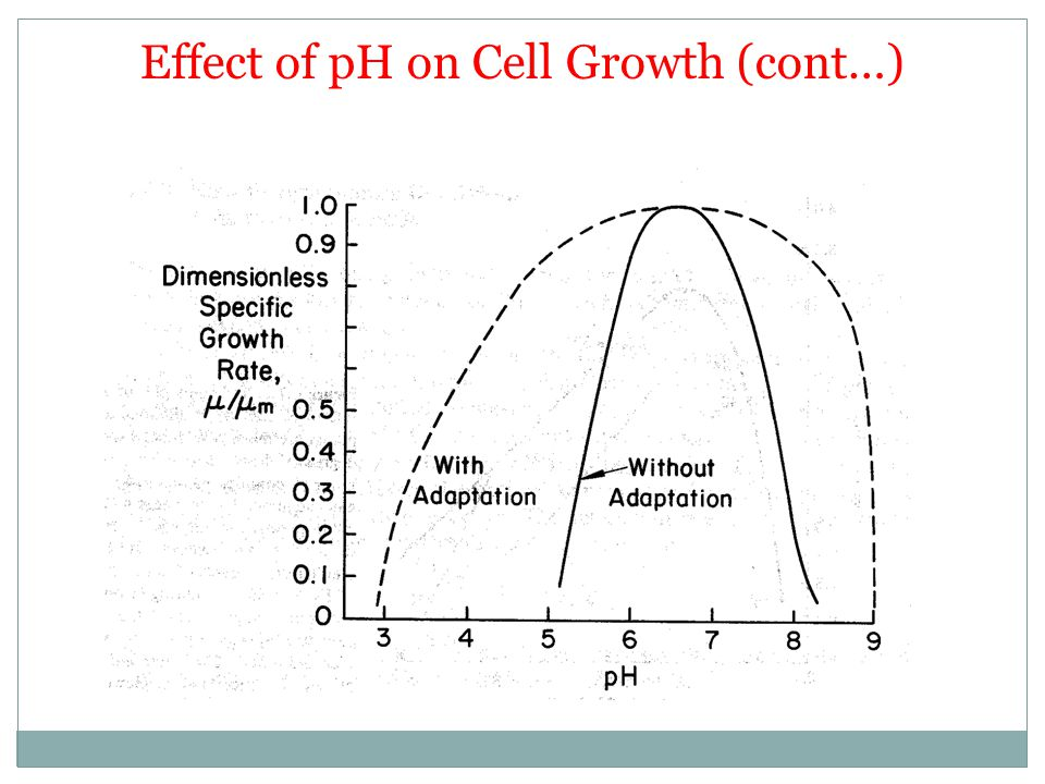 Effect of pH on Cell Growth (cont…)