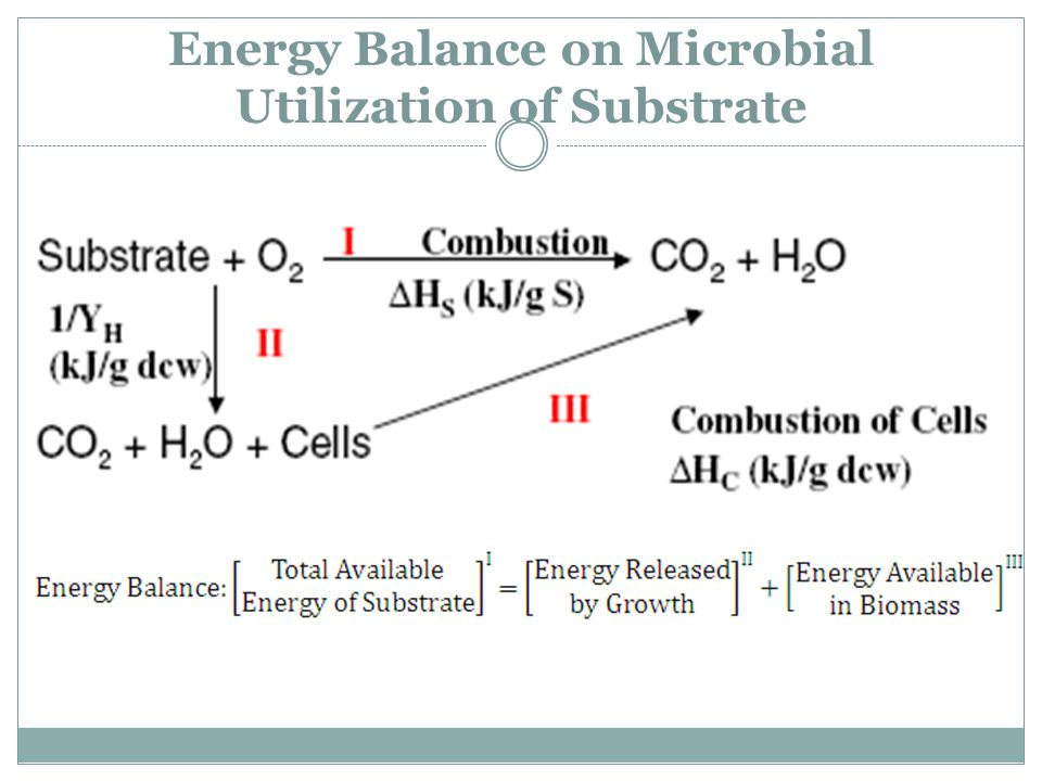 Energy Balance on Microbial Utilization of Substrate