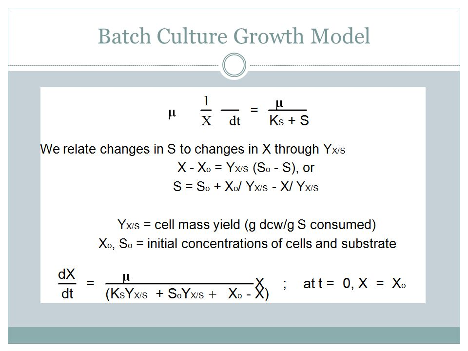 Batch Culture Growth Model