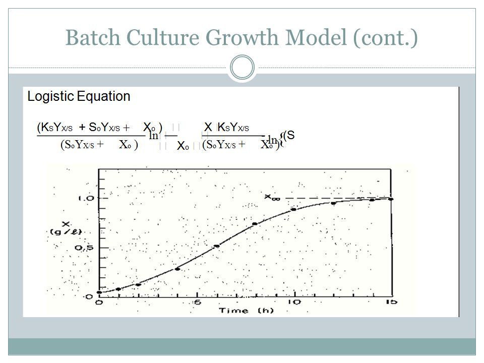 Batch Culture Growth Model (cont.)