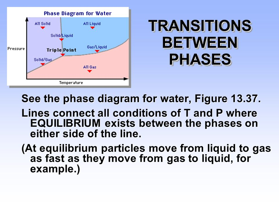 TRANSITIONS BETWEEN PHASES