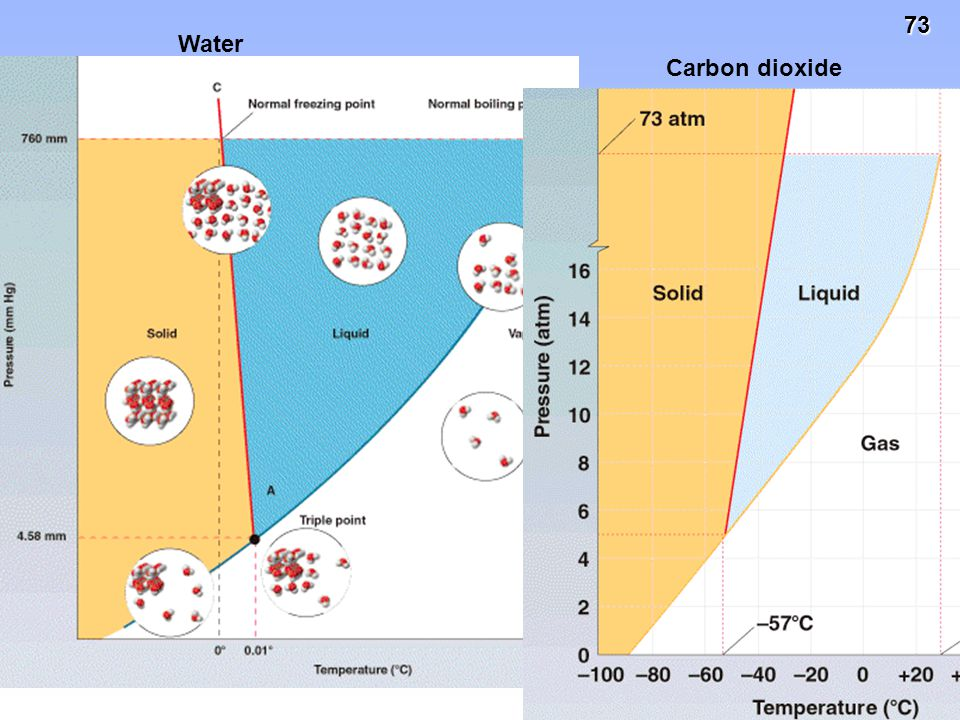 Water Carbon dioxide