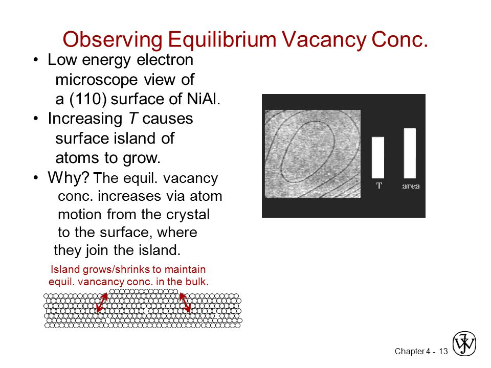 Observing Equilibrium Vacancy Conc.