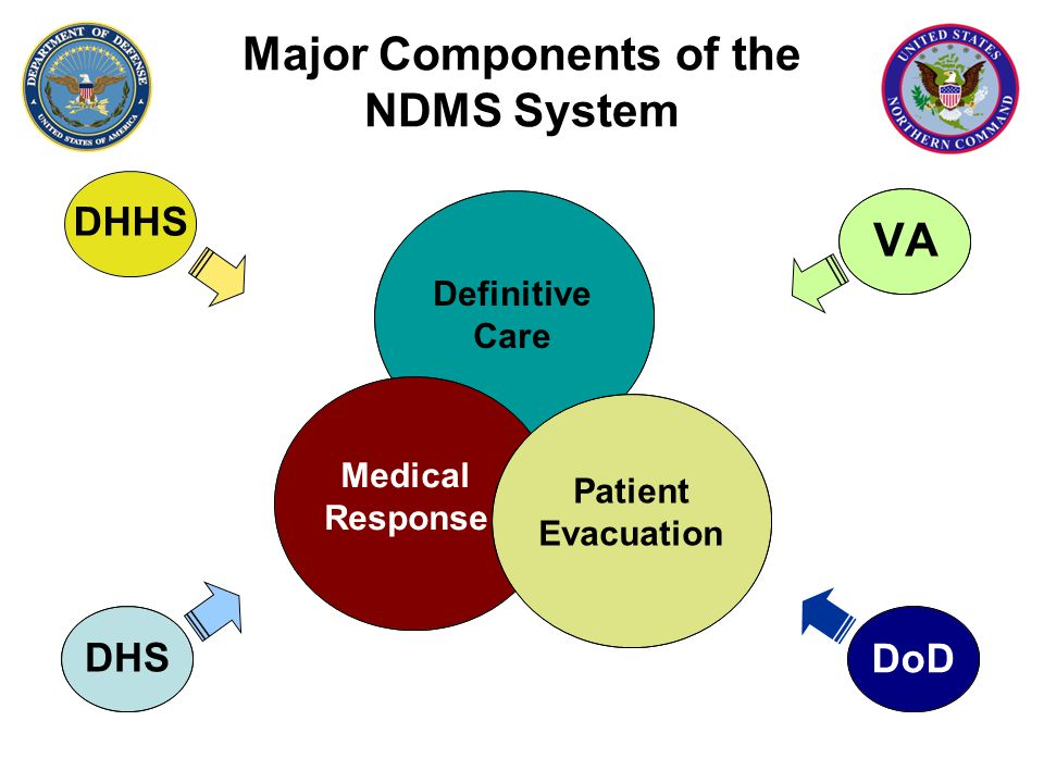 Major Components of the NDMS System