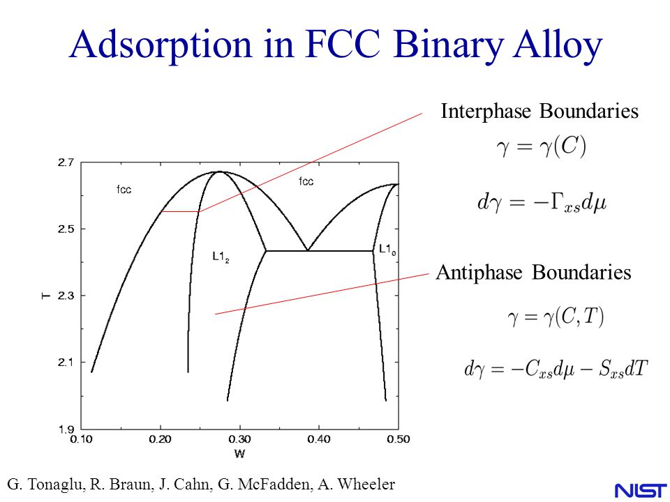 Adsorption in FCC Binary Alloy