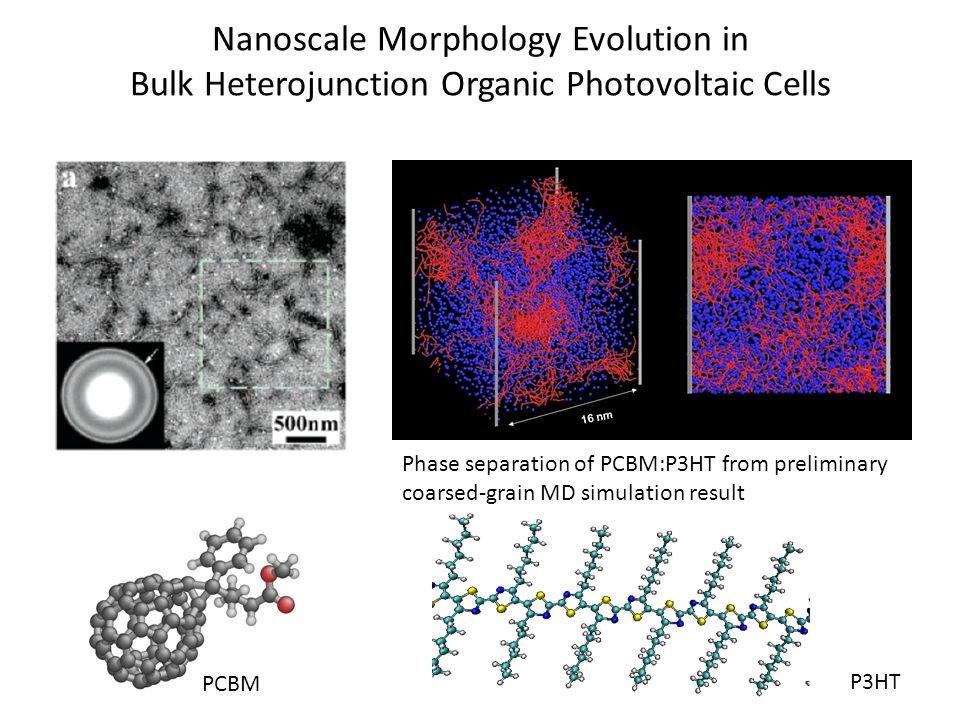 Nanoscale Morphology Evolution in Bulk Heterojunction Organic Photovoltaic Cells