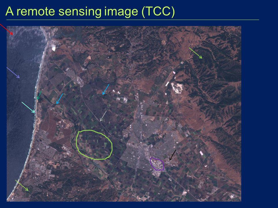 A remote sensing image (TCC)