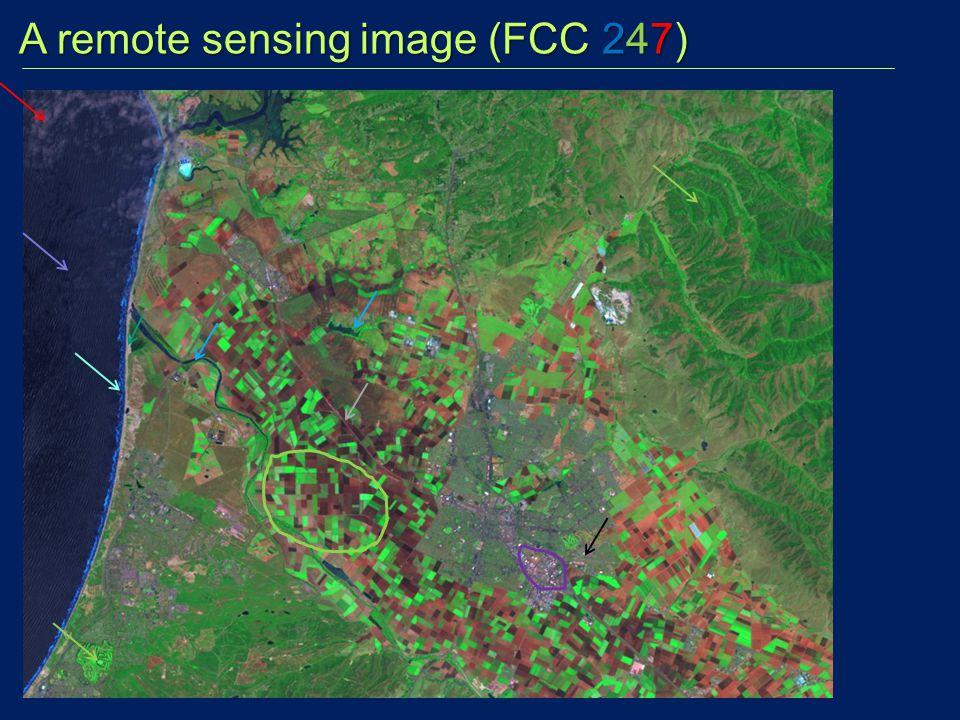 A remote sensing image (FCC 247)