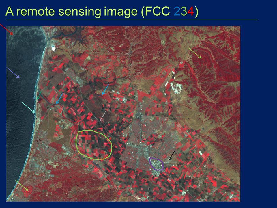 A remote sensing image (FCC 234)