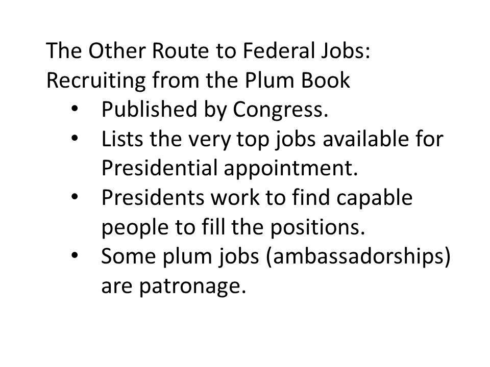 The Other Route to Federal Jobs: Recruiting from the Plum Book