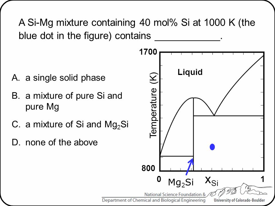 A Si-Mg mixture containing 40 mol% Si at 1000 K (the blue dot in the figure) contains ____________.