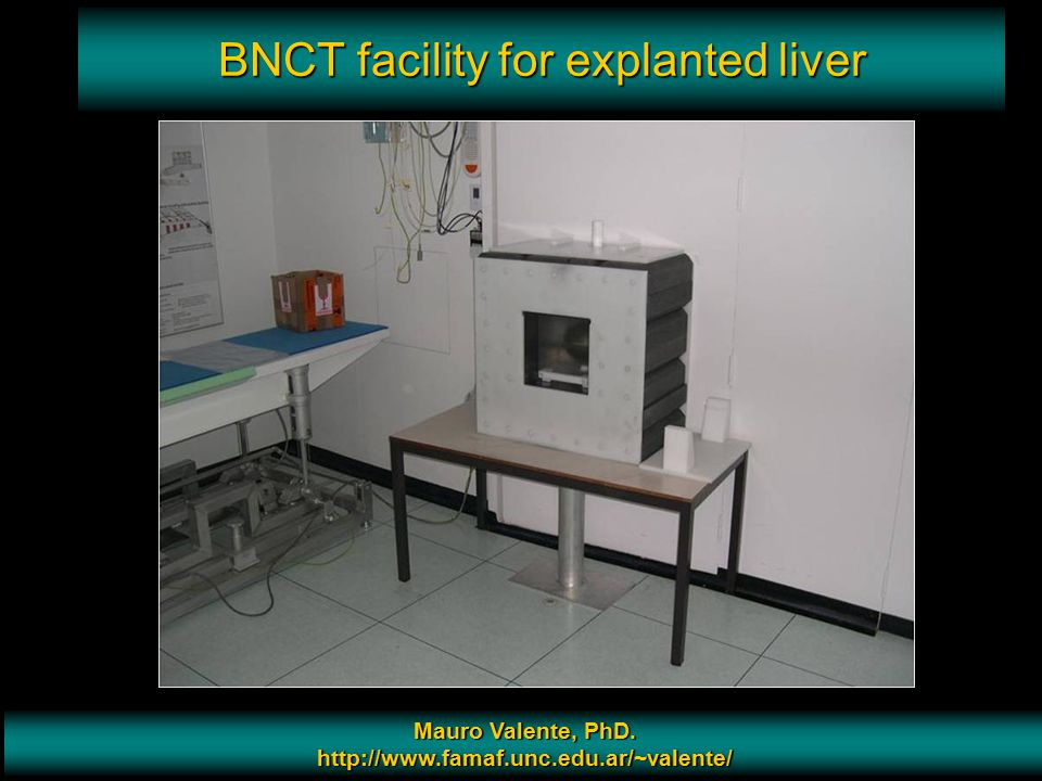 BNCT facility for explanted liver