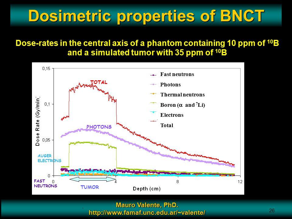 Dosimetric properties of BNCT