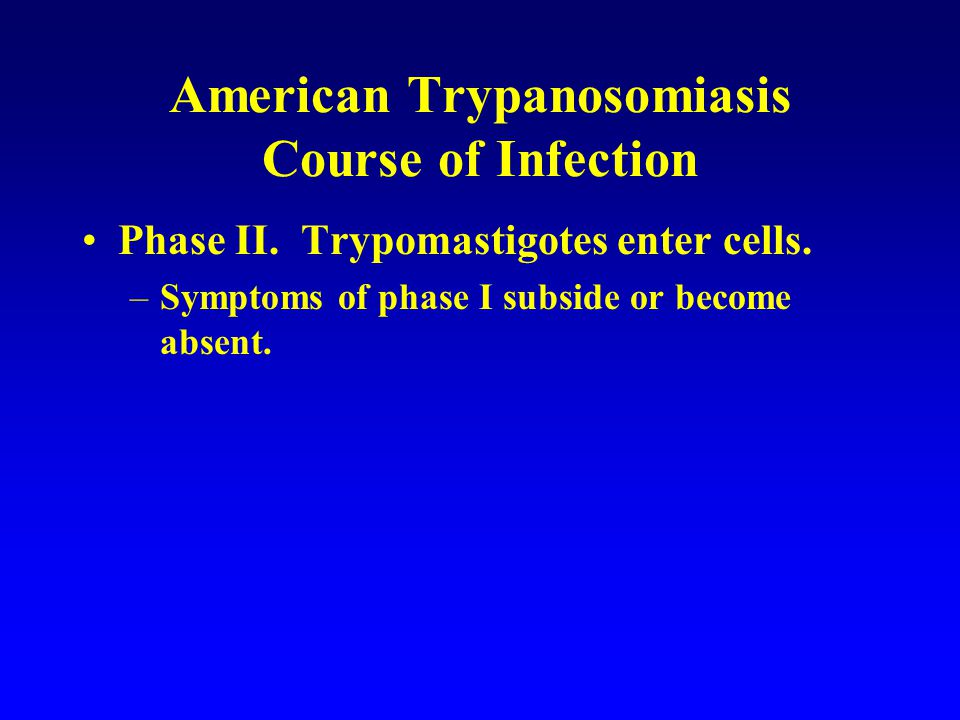 American Trypanosomiasis Course of Infection