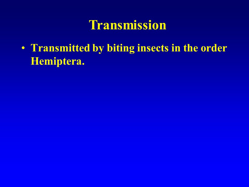 Transmission Transmitted by biting insects in the order Hemiptera.