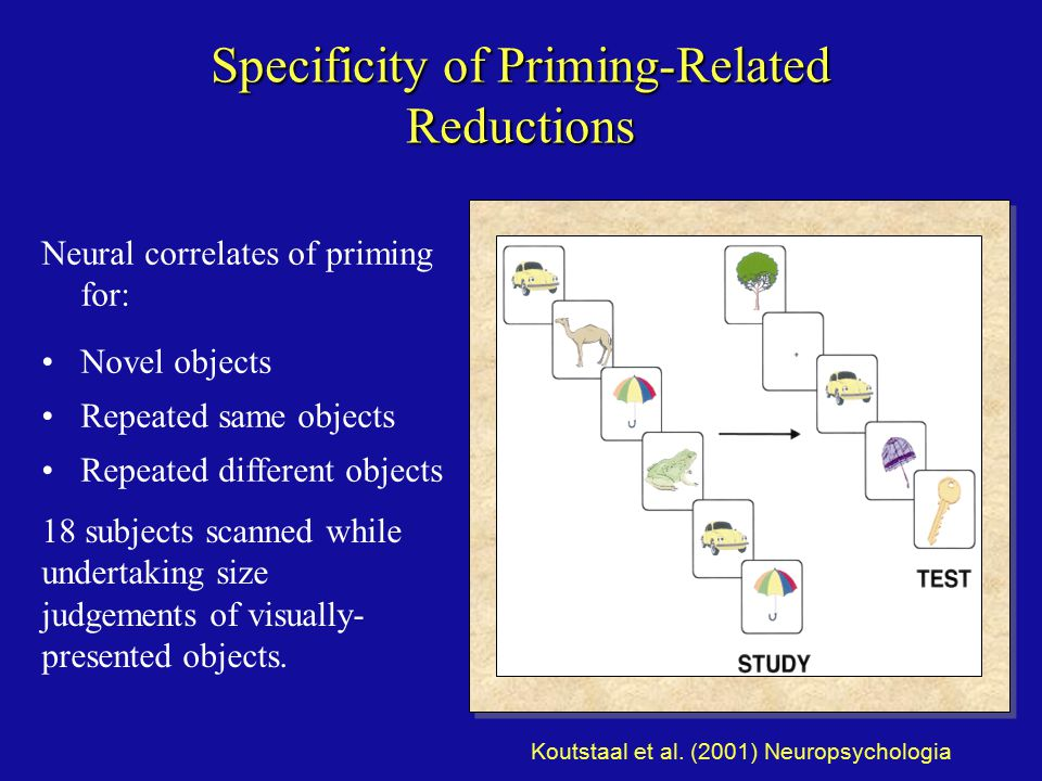 Specificity of Priming-Related Reductions