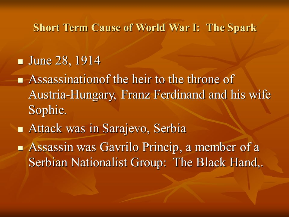 Short Term Cause of World War I: The Spark