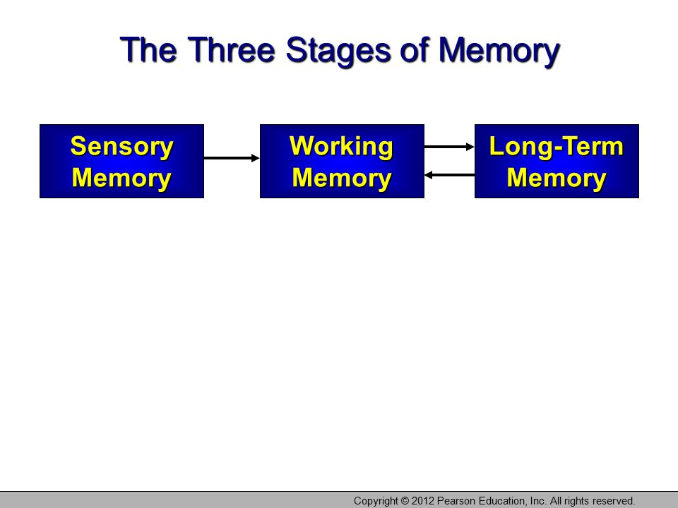 The Three Stages of Memory