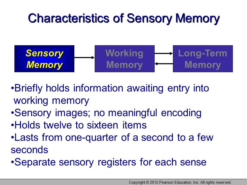 Characteristics of Sensory Memory